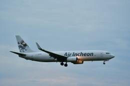 チョロ太さんが、成田国際空港で撮影したエア・インチョン 737-86J/SFの航空フォト(飛行機 写真・画像)
