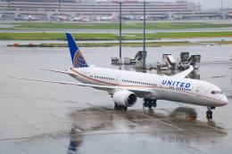 えのびよーんさんが、羽田空港で撮影したユナイテッド航空 787-9の航空フォト(飛行機 写真・画像)