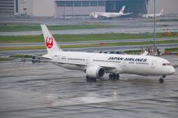 えのびよーんさんが、羽田空港で撮影した日本航空 787-9の航空フォト(飛行機 写真・画像)