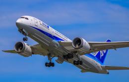 航空フォト:JA803A 全日空 787-8 Dreamliner