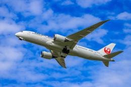 航空フォト:JA848J 日本航空 787-8 Dreamliner