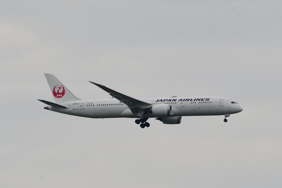 rangeroverさんの日本航空 Boeing 787-9 (JA873J) 航空フォト
