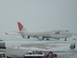 kohei787さんが、オヘア国際空港で撮影した日本航空 747-446の航空フォト(飛行機 写真・画像)