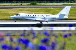 くれないさんが、高松空港で撮影したノエビア 680 Citation Sovereignの航空フォト(飛行機 写真・画像)