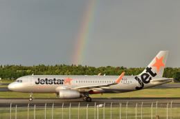 saoya_saodakeさんが、成田国際空港で撮影したジェットスター・ジャパン A320-232の航空フォト(飛行機 写真・画像)