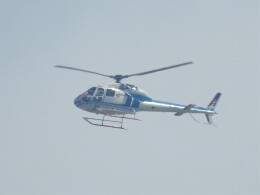 いねねさんが、名古屋飛行場で撮影した中日本航空 AS355F2 Ecureuil 2の航空フォト(飛行機 写真・画像)