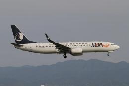 ☆H・I・J☆さんが、関西国際空港で撮影した山東航空 737-85Nの航空フォト(飛行機 写真・画像)