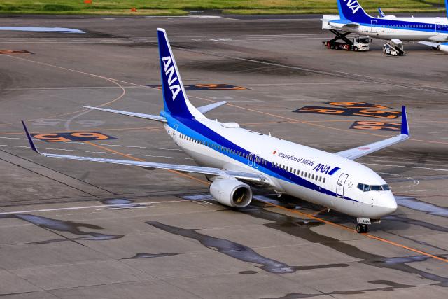 航空フォト:JA60AN 全日空