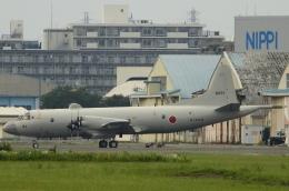 チャレンジャーさんが、厚木飛行場で撮影した海上自衛隊 P-3Cの航空フォト(飛行機 写真・画像)