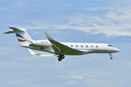 パンダさんが、成田国際空港で撮影したウィルミントン・トラスト・カンパニー G650 (G-VI)の航空フォト(飛行機 写真・画像)