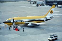 パール大山さんが、伊丹空港で撮影したロイヤルブルネイ航空 737-2M6/Advの航空フォト(飛行機 写真・画像)