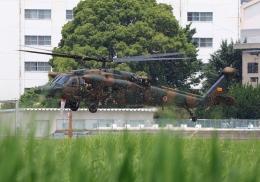 LOTUSさんが、八尾空港で撮影した陸上自衛隊 UH-60JAの航空フォト(飛行機 写真・画像)