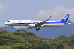 航空フォト:JA144A 全日空 A321neo