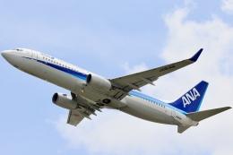 航空フォト:JA81AN 全日空 737-800