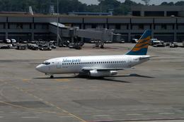 メニSさんが、シンガポール・チャンギ国際空港で撮影したメルパチ・ヌサンタラ航空 737-217/Advの航空フォト(飛行機 写真・画像)