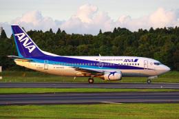 K.Tatsuyaさんが、成田国際空港で撮影したANAウイングス 737-54Kの航空フォト(飛行機 写真・画像)