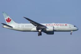 mameshibaさんが、成田国際空港で撮影したエア・カナダ 787-8 Dreamlinerの航空フォト(飛行機 写真・画像)