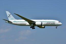 islandsさんが、成田国際空港で撮影したZIPAIR 787-8 Dreamlinerの航空フォト(飛行機 写真・画像)