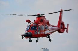 あまるめさんが、東京ヘリポートで撮影した東京消防庁航空隊 AS365N3 Dauphin 2の航空フォト(飛行機 写真・画像)