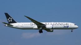 Bluewingさんが、成田国際空港で撮影した全日空 787-9の航空フォト(飛行機 写真・画像)