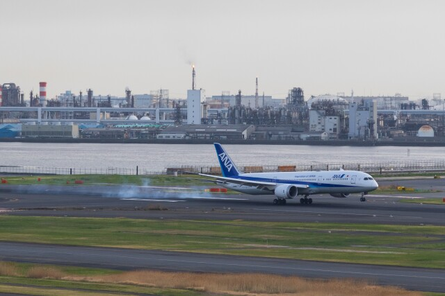 walker2000さんが、羽田空港で撮影した全日空 787-9の航空フォト(飛行機 写真・画像)