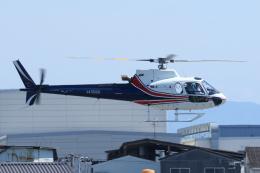 よっしぃさんが、八尾空港で撮影したノエビア AS350B3 Ecureuilの航空フォト(飛行機 写真・画像)
