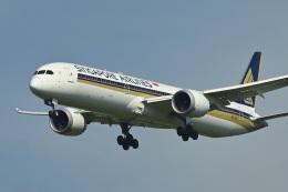 パンダさんが、成田国際空港で撮影したシンガポール航空 787-10の航空フォト(飛行機 写真・画像)