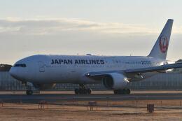 天心さんが、伊丹空港で撮影した日本航空 777-246の航空フォト(飛行機 写真・画像)