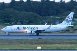 さんごーさんが、成田国際空港で撮影したエア・インチョン 737-86J/SFの航空フォト(飛行機 写真・画像)