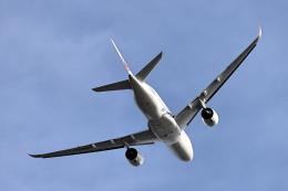 juntamiさんが、羽田空港で撮影した日本航空 A350-941の航空フォト(飛行機 写真・画像)