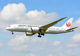 航空フォト:JA828J 日本航空 787-8 Dreamliner