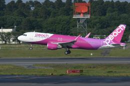 チャーリーマイクさんが、成田国際空港で撮影したピーチ A320-214の航空フォト(飛行機 写真・画像)