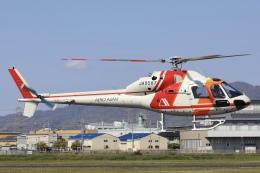 Hii82さんが、八尾空港で撮影した朝日航洋 AS355F Ecureuil 2の航空フォト(飛行機 写真・画像)
