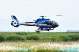 Gambardierさんが、岡南飛行場で撮影したオートパンサー EC130T2 (H130)の航空フォト(飛行機 写真・画像)