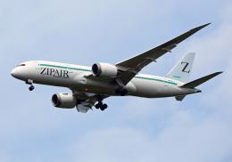 NINEJETSさんが、成田国際空港で撮影したZIPAIR 787-8 Dreamlinerの航空フォト(飛行機 写真・画像)