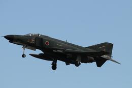はみんぐばーどさんが、岐阜基地で撮影した航空自衛隊 RF-4EJ Phantom IIの航空フォト(飛行機 写真・画像)