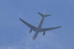 ゆなりあさんが、中部国際空港で撮影したチャイナエアライン A330-302の航空フォト(飛行機 写真・画像)