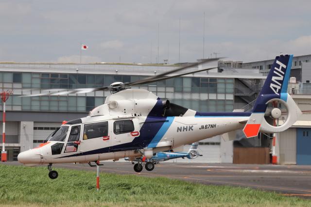 航空フォト:JA67NH オールニッポンヘリコプター