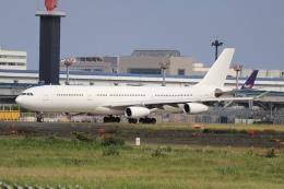 A350XWB-HNDさんが、成田国際空港で撮影したハイ・フライ・マルタ A340-313Xの航空フォト(飛行機 写真・画像)