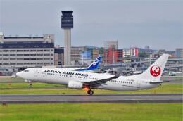 航空フォト:JA324J 日本航空 737-800