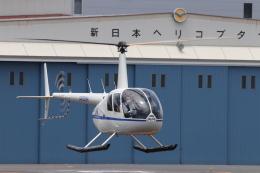 KAZFLYERさんが、東京ヘリポートで撮影したディーエイチシー R44 Raven IIの航空フォト(飛行機 写真・画像)
