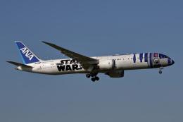 MOHICANさんが、成田国際空港で撮影した全日空 787-9の航空フォト(飛行機 写真・画像)