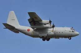 350JMさんが、厚木飛行場で撮影した海上自衛隊 C-130Rの航空フォト(飛行機 写真・画像)