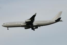 Cozy Gotoさんが、成田国際空港で撮影したハイ・フライ・マルタ A340-313Xの航空フォト(飛行機 写真・画像)