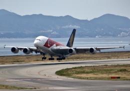 MOHICANさんが、関西国際空港で撮影したシンガポール航空 A380-841の航空フォト(飛行機 写真・画像)