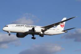 航空フォト:JA840J 日本航空 787-8 Dreamliner