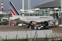 TA27さんが、パリ シャルル・ド・ゴール国際空港で撮影したエールフランス航空 A318-111の航空フォト(飛行機 写真・画像)