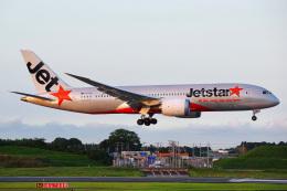 Tatsuya.Kさんが、成田国際空港で撮影したジェットスター 787-8 Dreamlinerの航空フォト(飛行機 写真・画像)