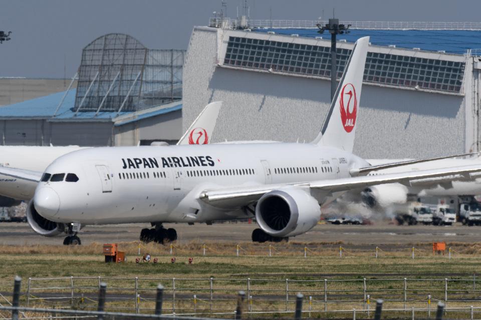 panchiさんの日本航空 Boeing 787-9 (JA866J) 航空フォト