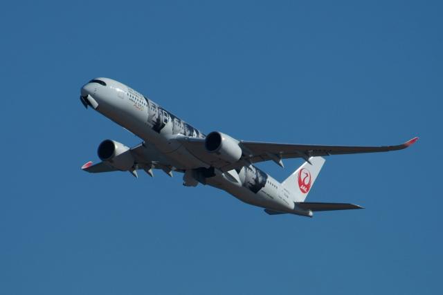 どらネコ★きんぐさんが、羽田空港で撮影した日本航空 A350-941の航空フォト(飛行機 写真・画像)